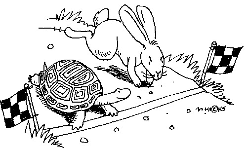 Tortoise Hare Leadership